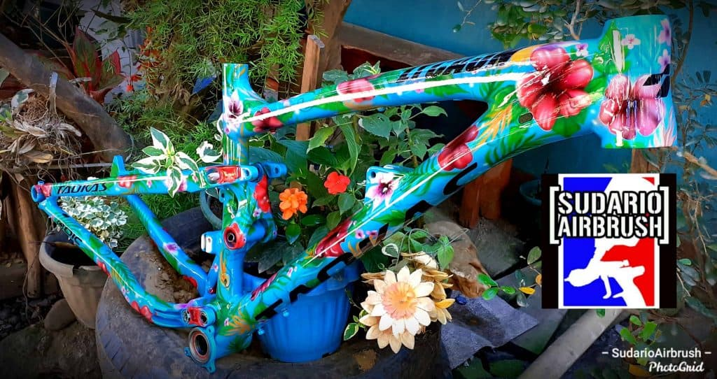 Will the Cost of the Paint Job Depend on the Bike