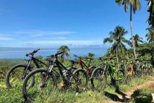 What to Look for When Buying a Used Mountain Bike
